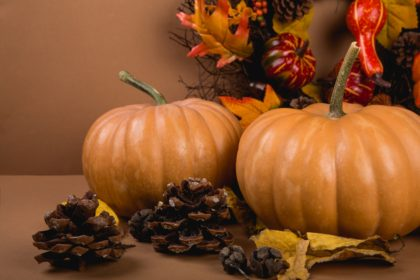 5 Fall Décor Ideas to Ring in the New Season